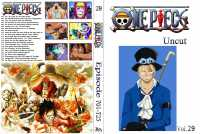 One Piece selfmade Covers L40a-2k-16f9